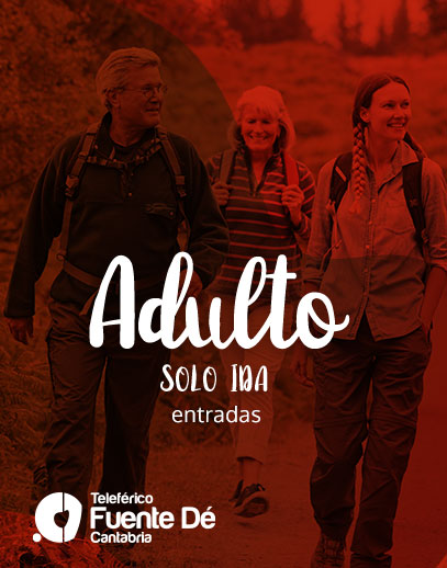Fuente Dé – Entradas adulto (solo ida)